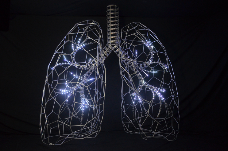 Giant Led Lungs For Lung Cancer Awareness Month